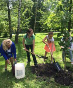 銀杏の植樹 スコップで土をかけて